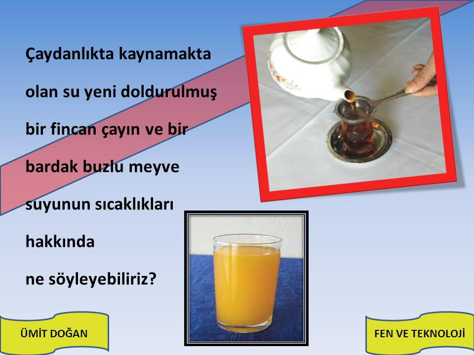Çaydanlıkta kaynamakta olan su yeni doldurulmuş bir fincan çayın ve bir bardak buzlu meyve suyunun sıcaklıkları hakkında ne söyleyebiliriz