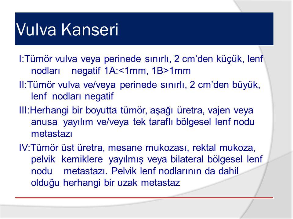 Vulva Kanseri I:Tümör vulva veya perinede sınırlı, 2 cm'den küçük, lenf nodları negatif 1A:<1mm, 1B>1mm.