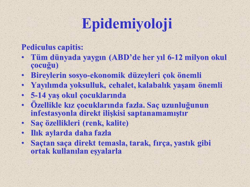Epidemiyoloji Pediculus capitis: