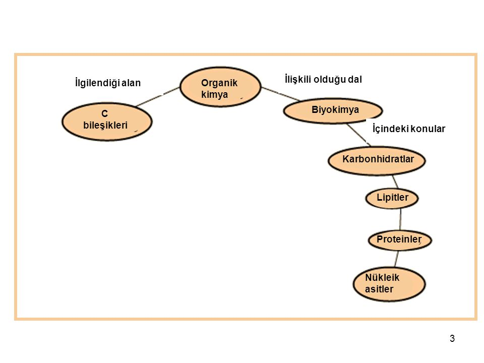 İlişkili olduğu dal İlgilendiği alan. Organik kimya. Biyokimya. C bileşikleri. İçindeki konular.