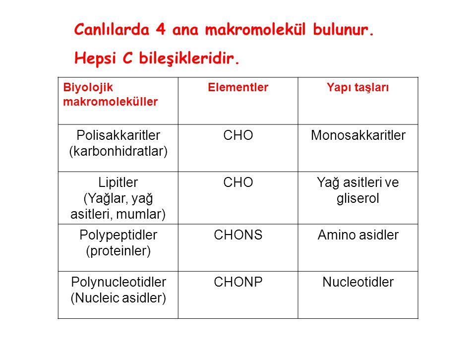 Canlılarda 4 ana makromolekül bulunur. Hepsi C bileşikleridir.