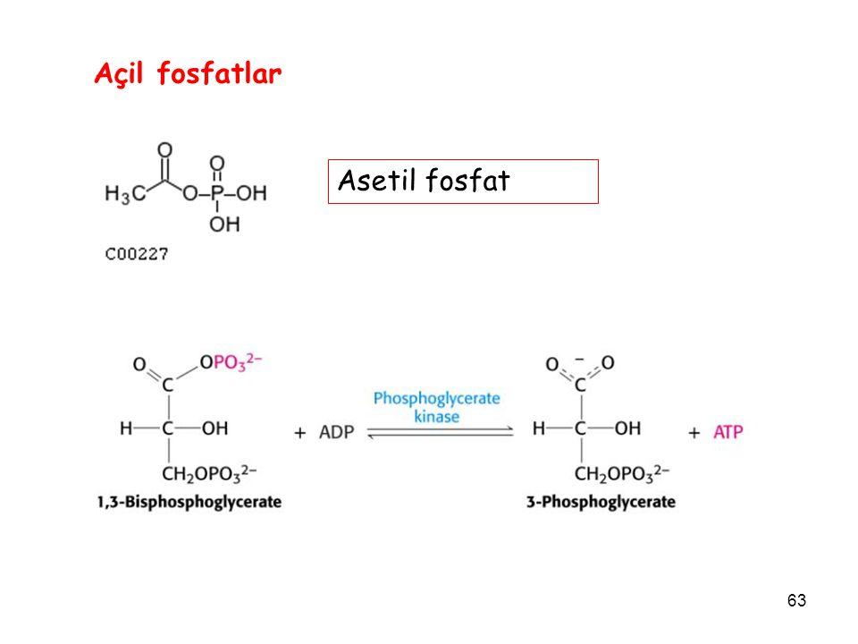 Açil fosfatlar Asetil fosfat