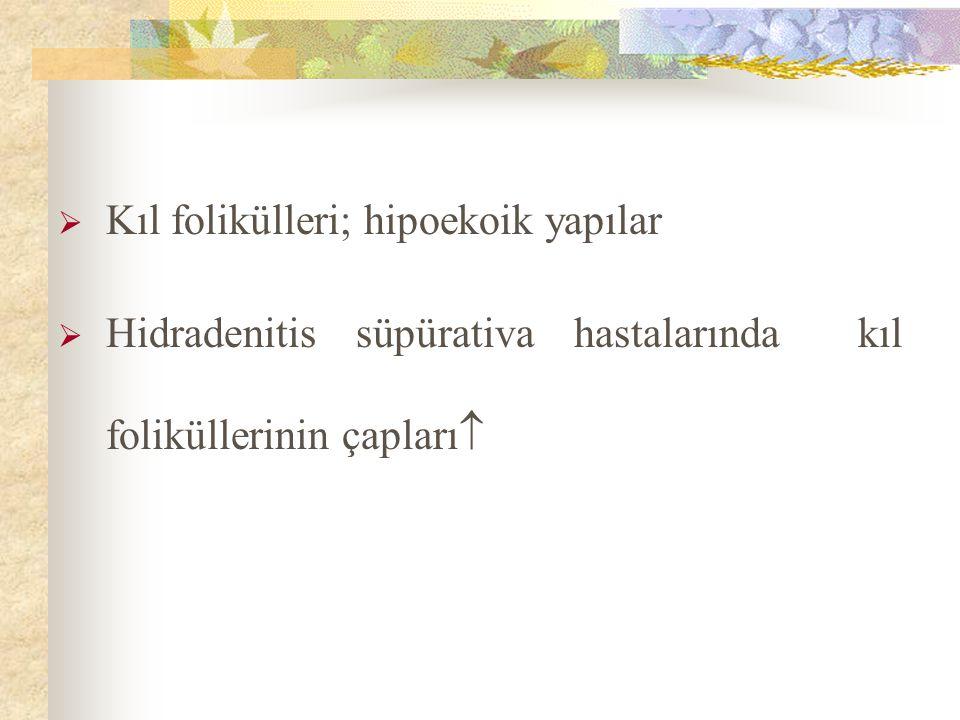Kıl folikülleri; hipoekoik yapılar