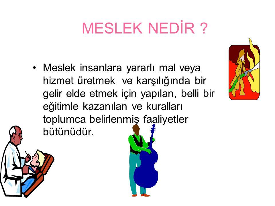 MESLEK NEDİR