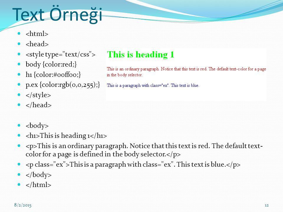 Text Örneği <html> <head> <style type= text/css >