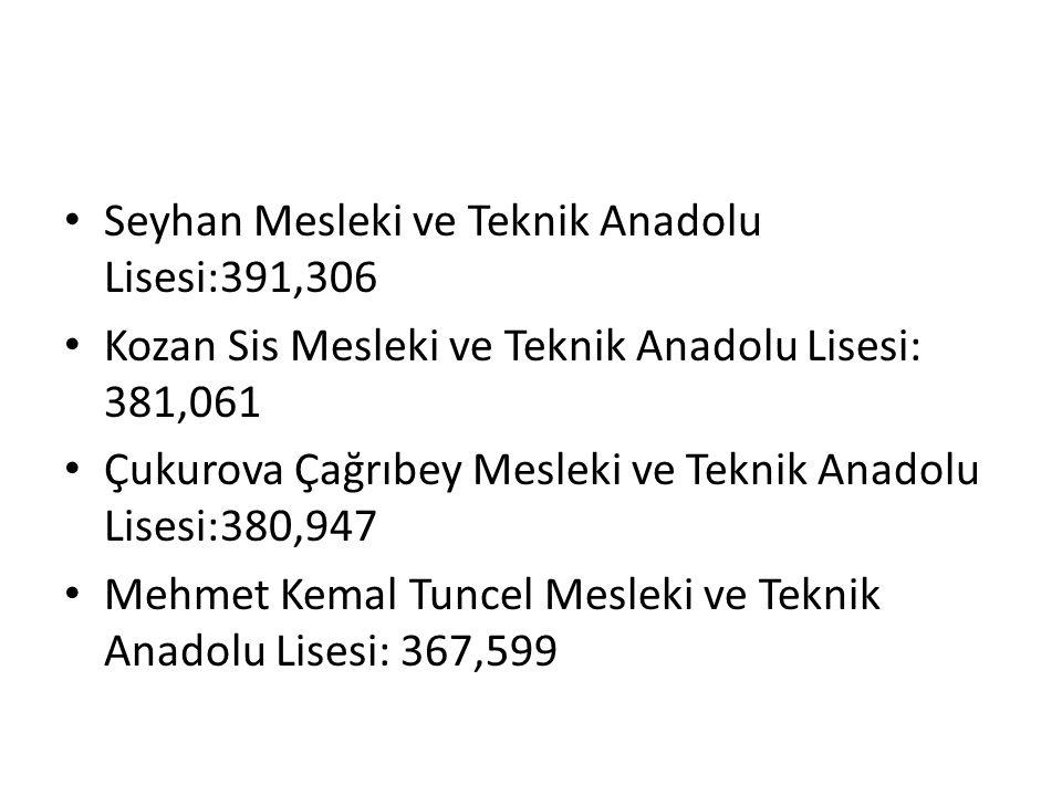 Seyhan Mesleki ve Teknik Anadolu Lisesi:391,306