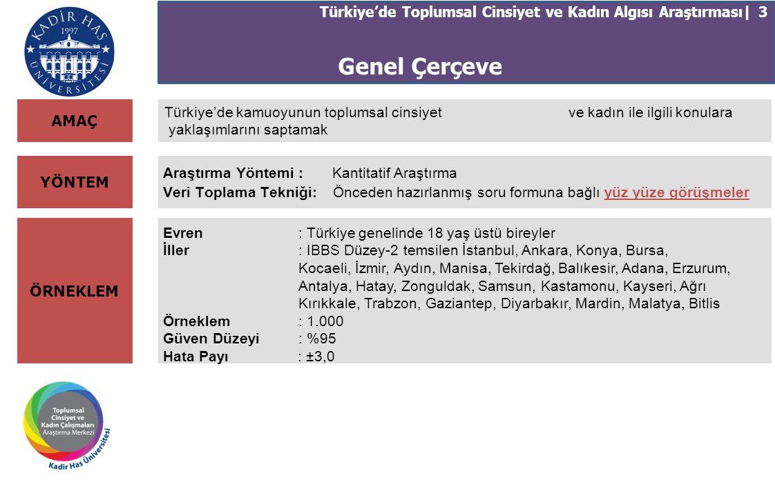 Türkiye'de Toplumsal Cinsiyet ve Kadın Algısı Araştırması| 3