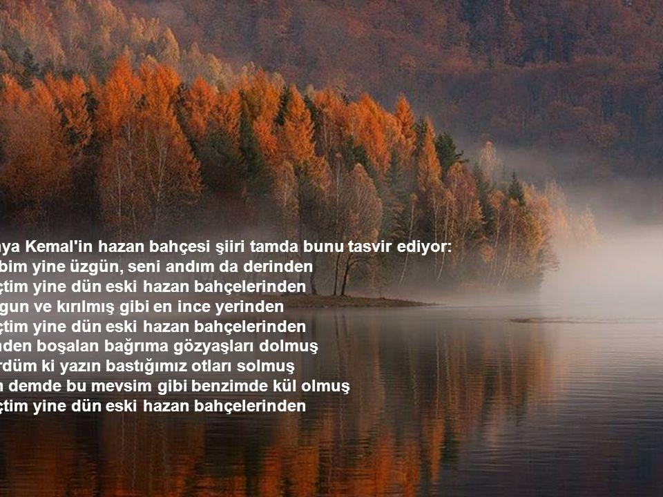 Yahya Kemal in hazan bahçesi şiiri tamda bunu tasvir ediyor: