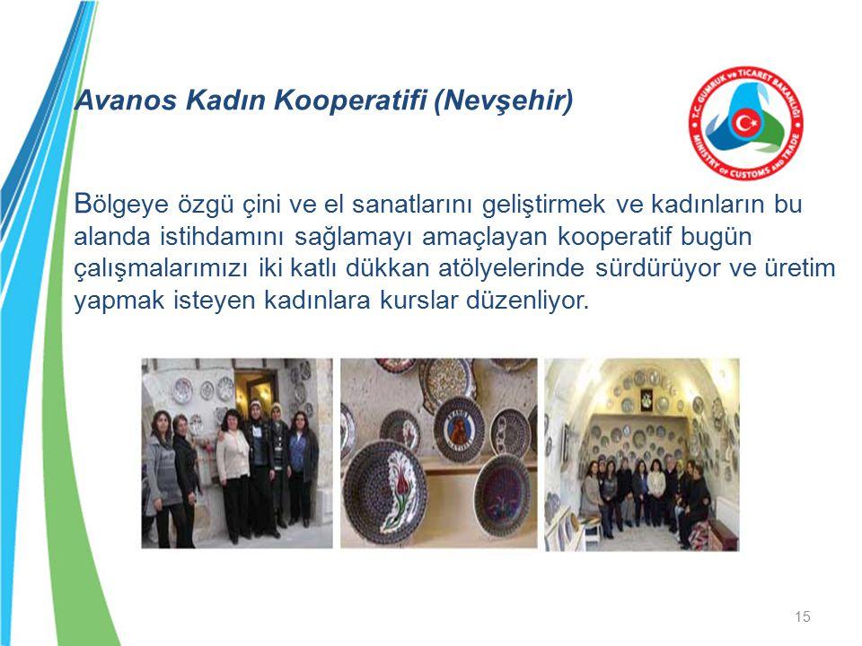 Avanos Kadın Kooperatifi (Nevşehir) Bölgeye özgü çini ve el sanatlarını geliştirmek ve kadınların bu alanda istihdamını sağlamayı amaçlayan kooperatif bugün çalışmalarımızı iki katlı dükkan atölyelerinde sürdürüyor ve üretim yapmak isteyen kadınlara kurslar düzenliyor.