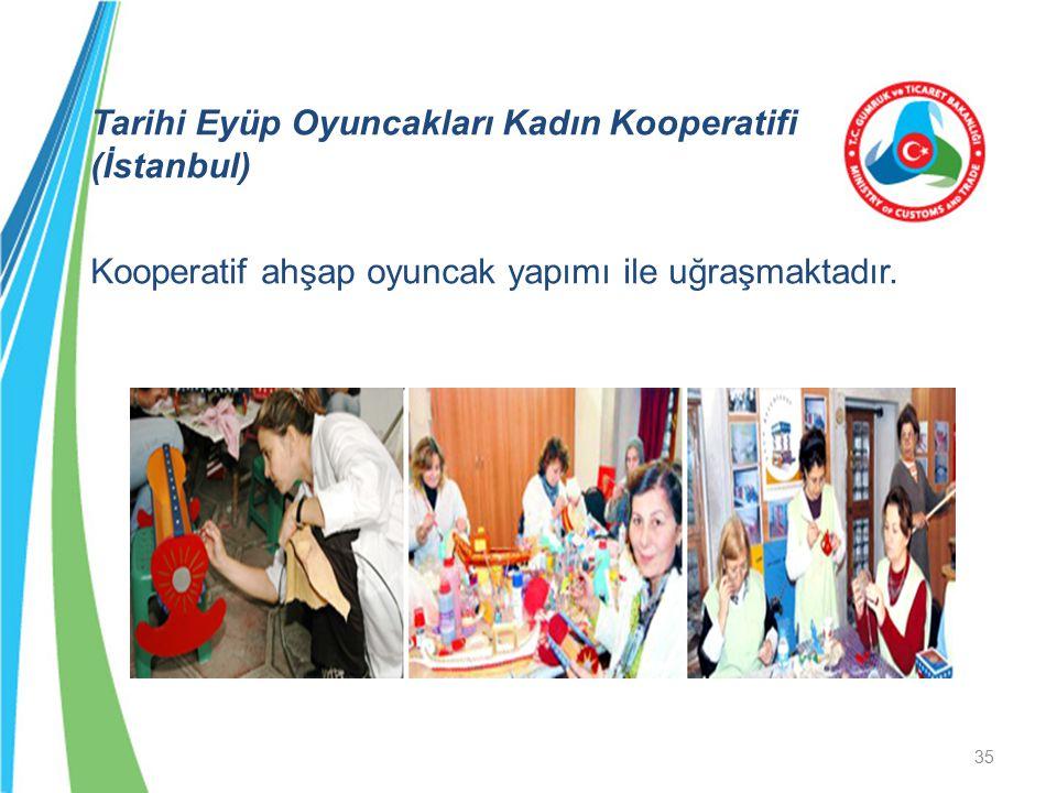 Tarihi Eyüp Oyuncakları Kadın Kooperatifi (İstanbul) Kooperatif ahşap oyuncak yapımı ile uğraşmaktadır.