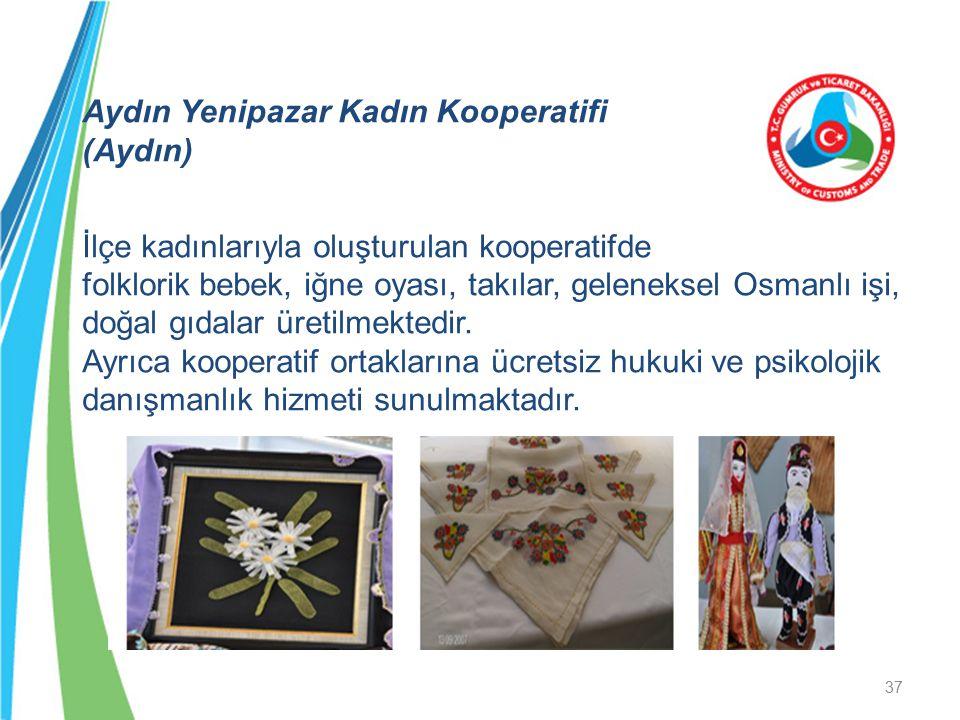 Aydın Yenipazar Kadın Kooperatifi (Aydın) İlçe kadınlarıyla oluşturulan kooperatifde folklorik bebek, iğne oyası, takılar, geleneksel Osmanlı işi, doğal gıdalar üretilmektedir.