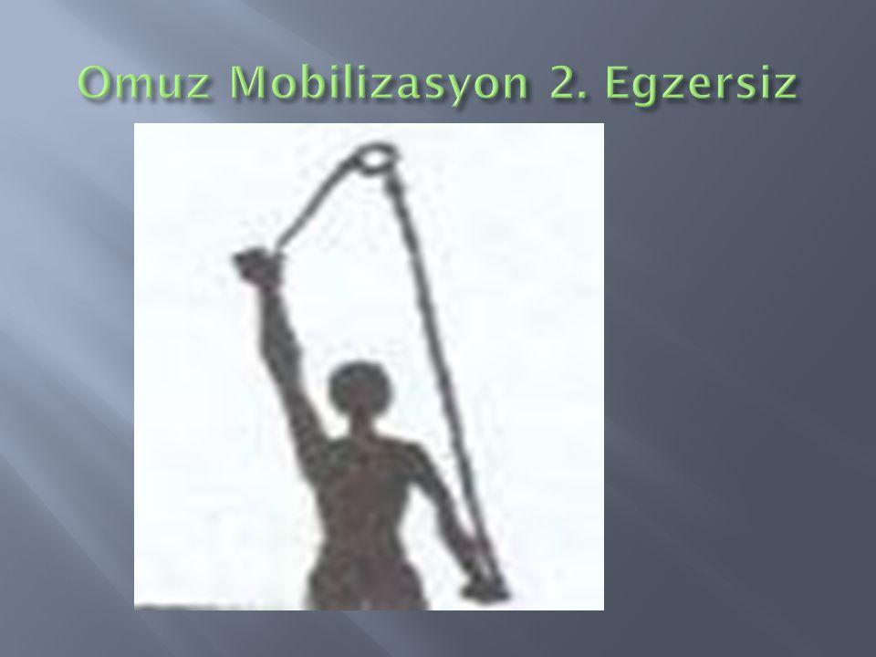 Omuz Mobilizasyon 2. Egzersiz