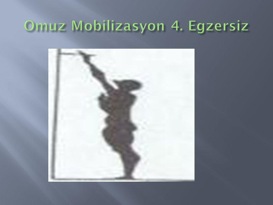 Omuz Mobilizasyon 4. Egzersiz