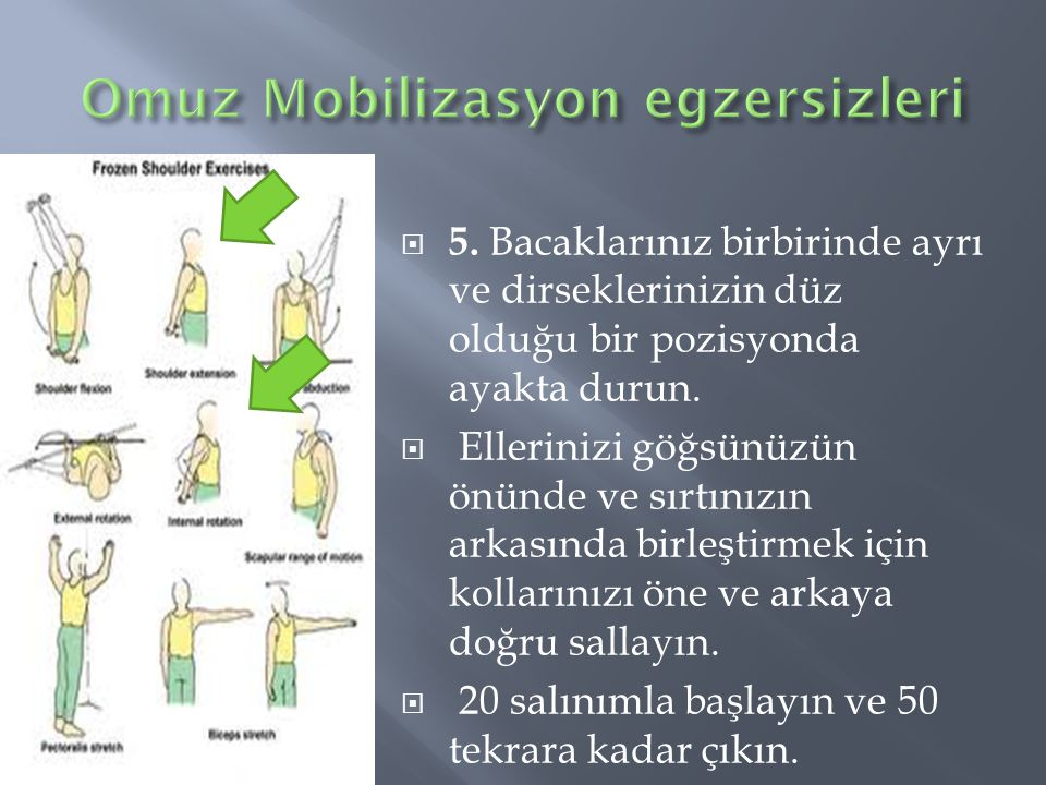 Omuz Mobilizasyon egzersizleri