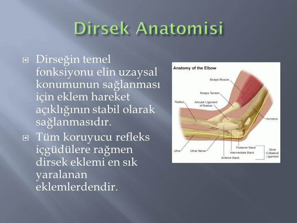 Dirsek Anatomisi Dirseğin temel fonksiyonu elin uzaysal konumunun sağlanması için eklem hareket açıklığının stabil olarak sağlanmasıdır.