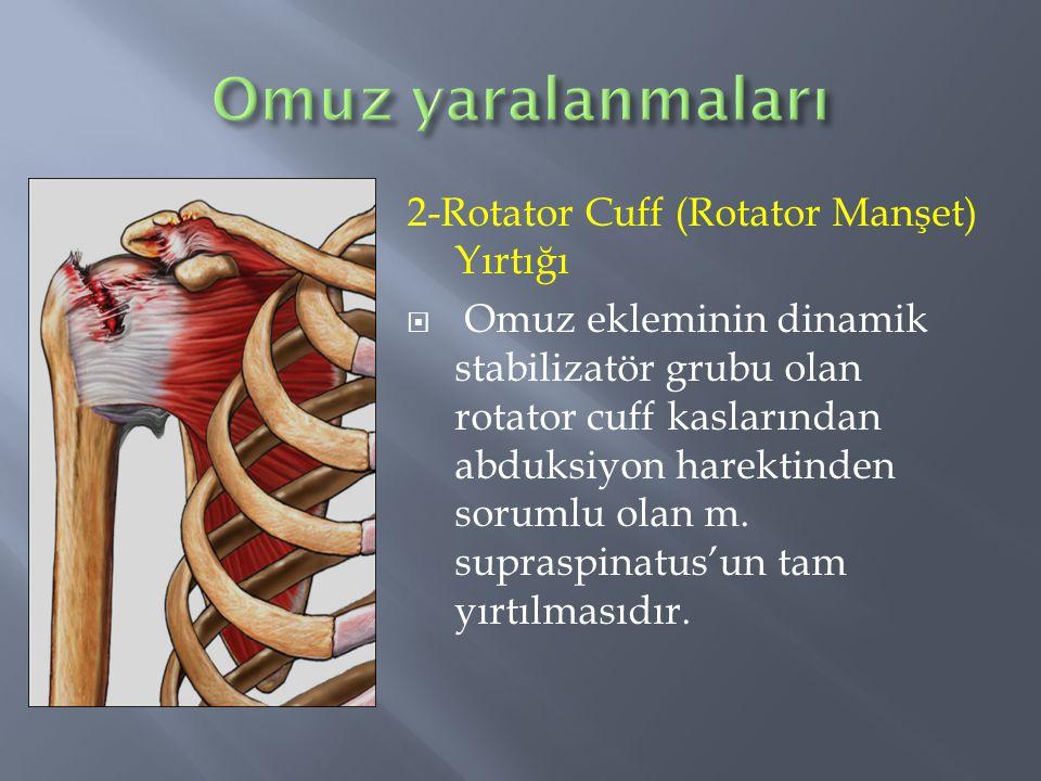 Omuz yaralanmaları 2-Rotator Cuff (Rotator Manşet) Yırtığı