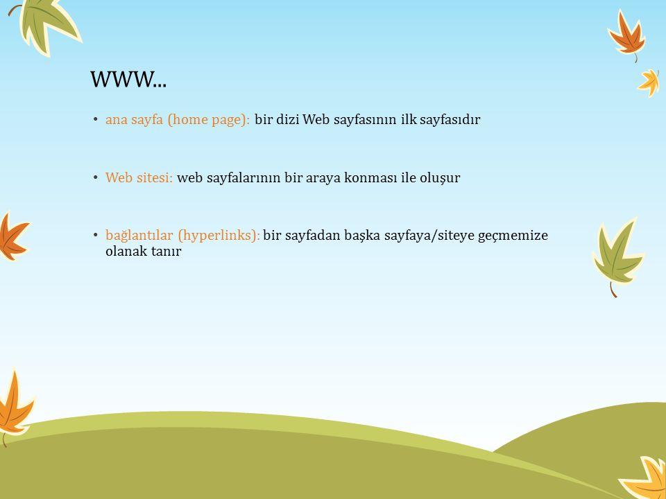 WWW... ana sayfa (home page): bir dizi Web sayfasının ilk sayfasıdır