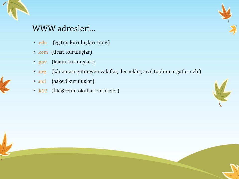 WWW adresleri... .edu (eğitim kuruluşları-üniv.)