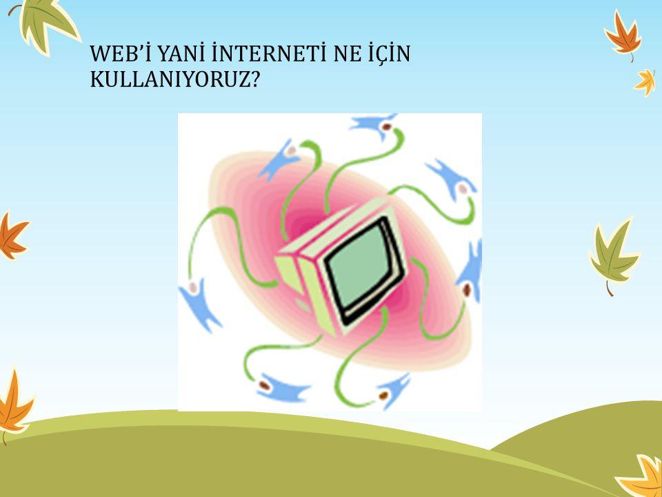 WEB'İ YANİ İNTERNETİ NE İÇİN KULLANIYORUZ