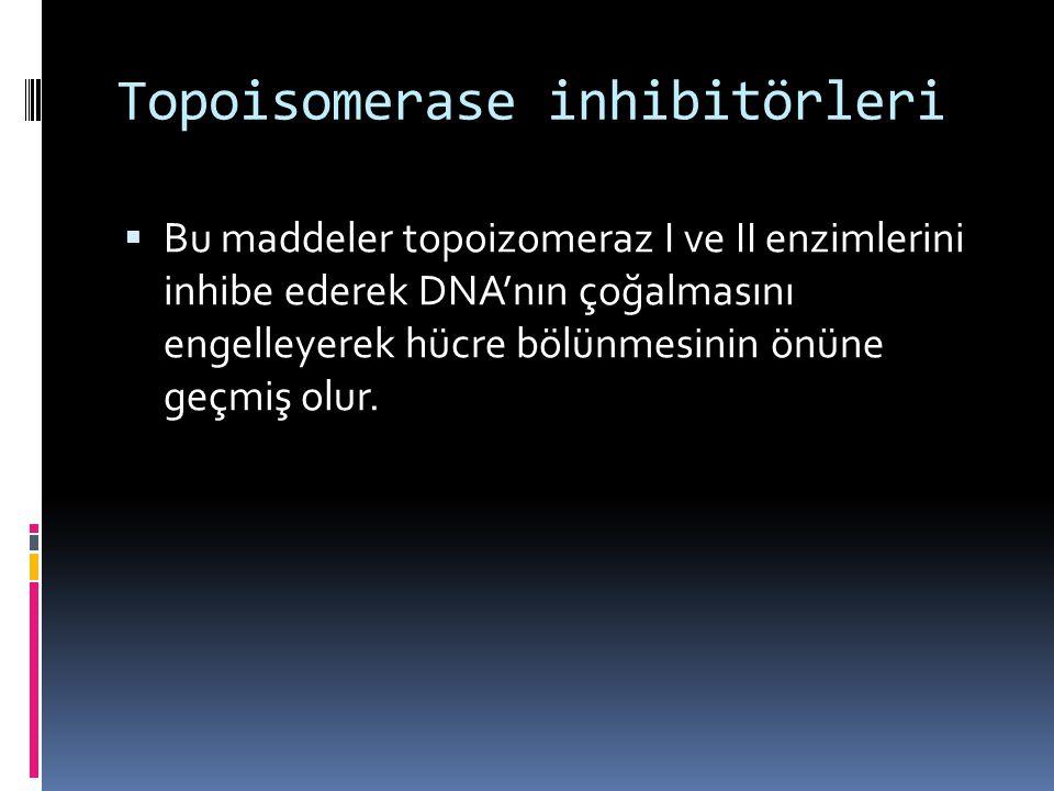 Topoisomerase inhibitörleri