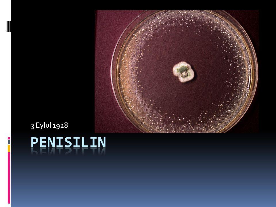 3 Eylül 1928 Penisilin