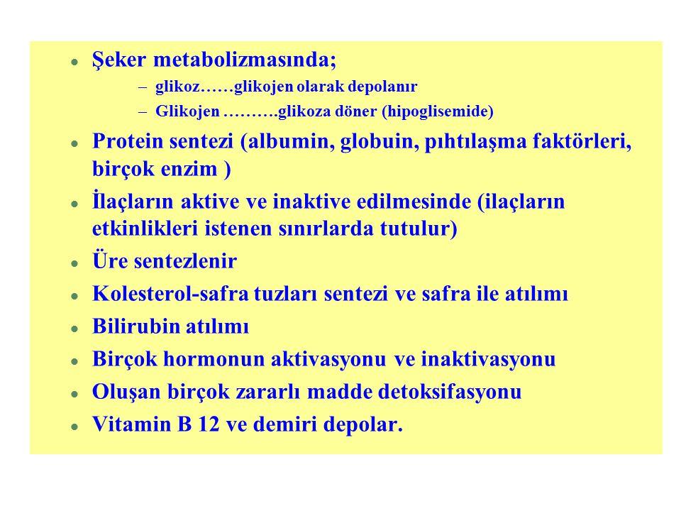 Şeker metabolizmasında;