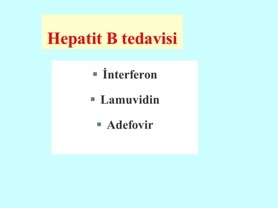 Hepatit B tedavisi İnterferon Lamuvidin Adefovir