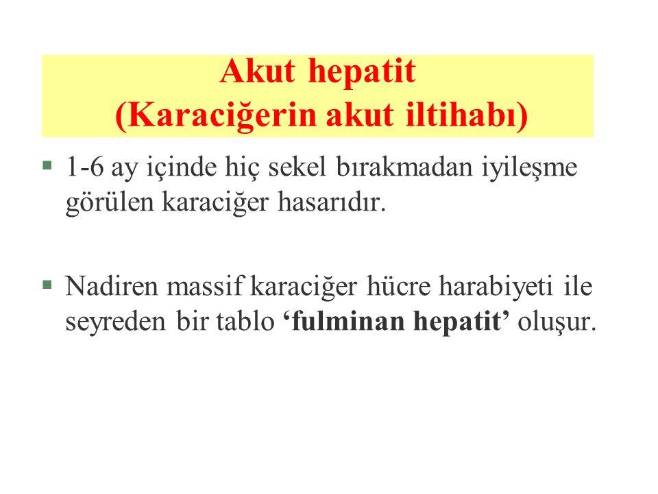 Akut hepatit (Karaciğerin akut iltihabı)