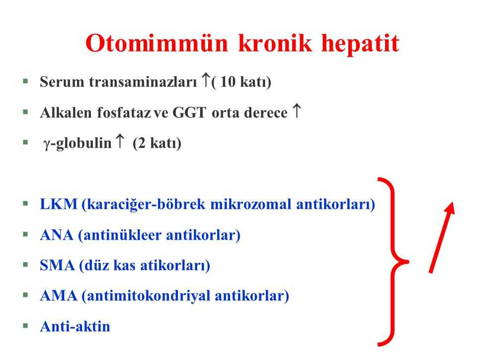Otomimmün kronik hepatit