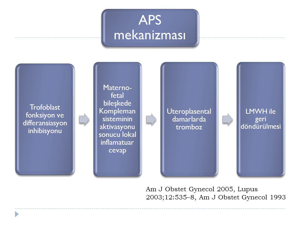 APS mekanizması Trofoblast fonksiyon ve differansiasyon inhibisyonu.