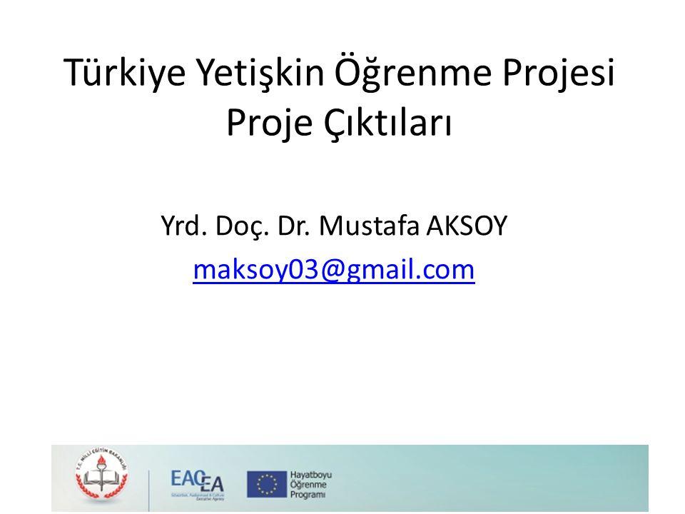 Türkiye Yetişkin Öğrenme Projesi Proje Çıktıları
