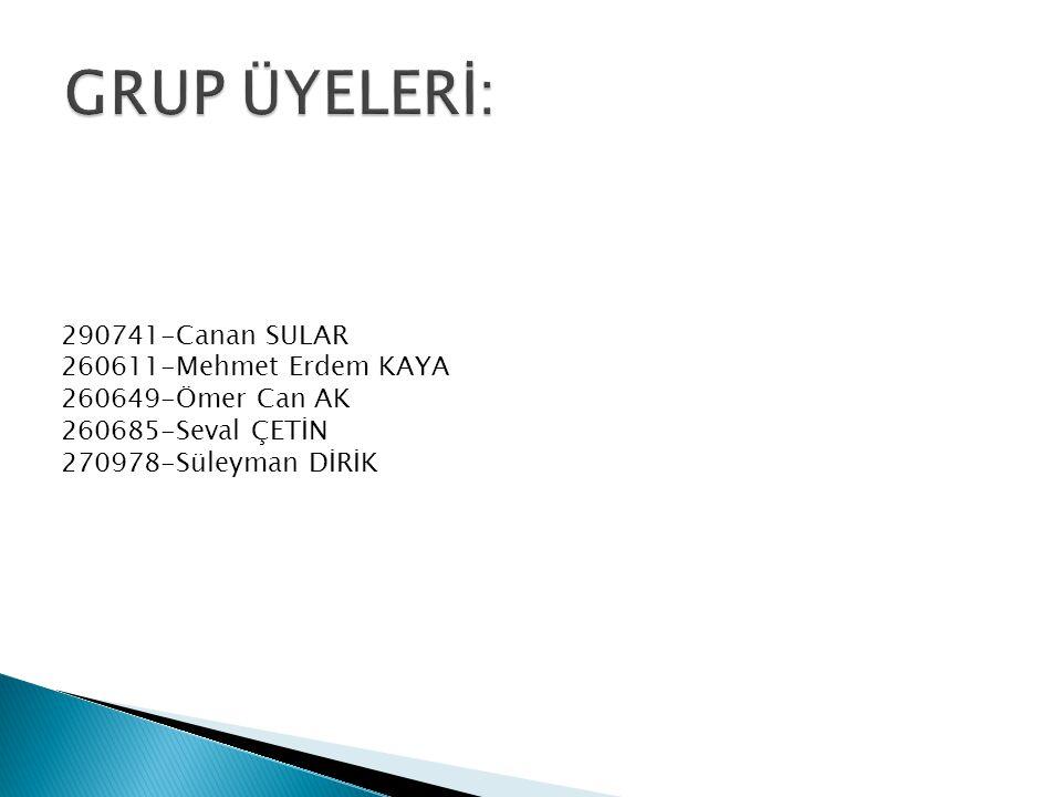 GRUP ÜYELERİ: 290741-Canan SULAR 260611-Mehmet Erdem KAYA