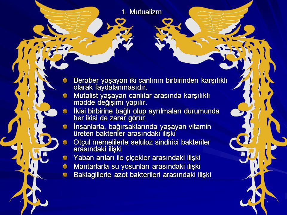 1. Mutualizm Beraber yaşayan iki canlının birbirinden karşılıklı olarak faydalanmasıdır.