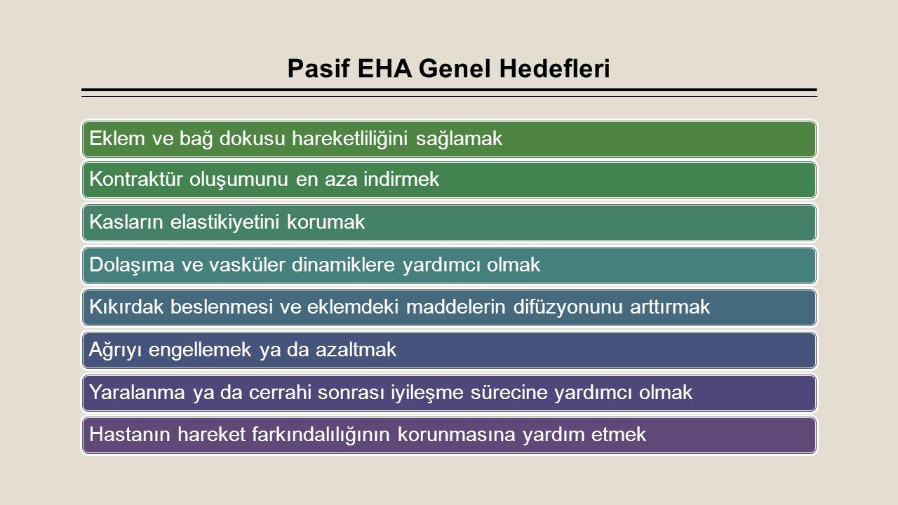 Pasif EHA Genel Hedefleri