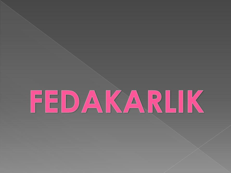 FEDAKARLIK