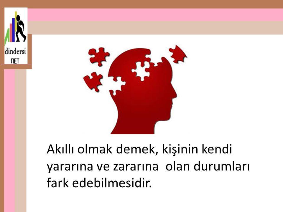 Akıllı olmak demek, kişinin kendi yararına ve zararına olan durumları fark edebilmesidir.