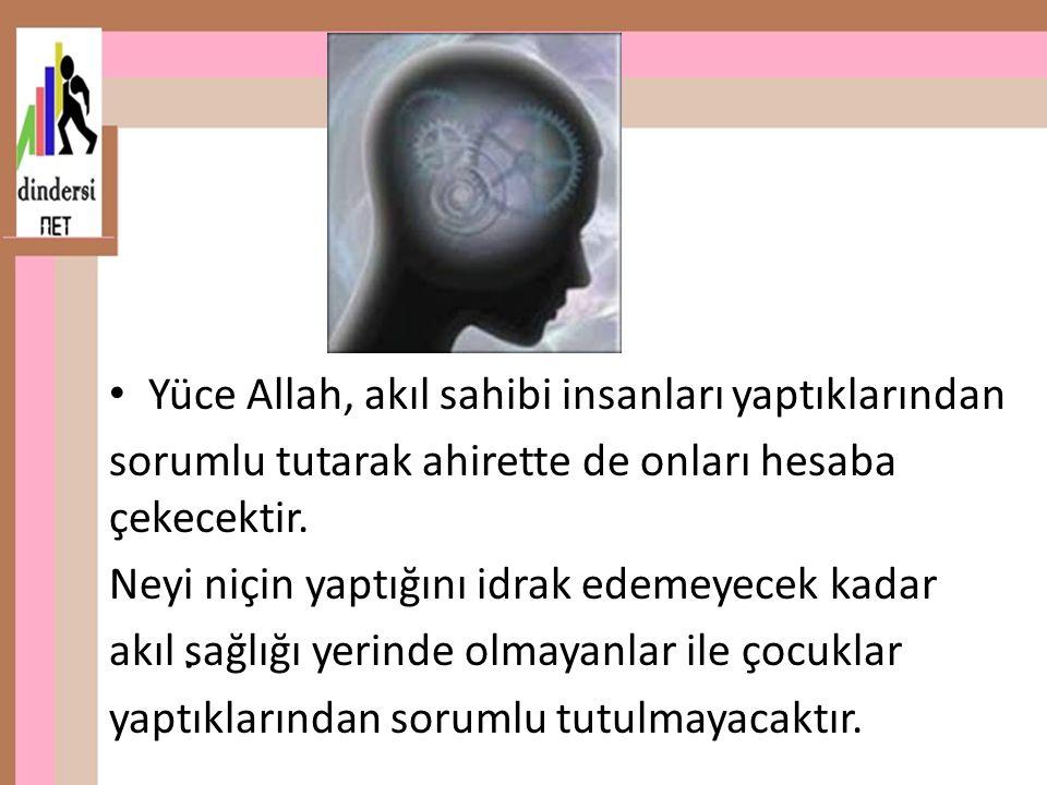 . Yüce Allah, akıl sahibi insanları yaptıklarından