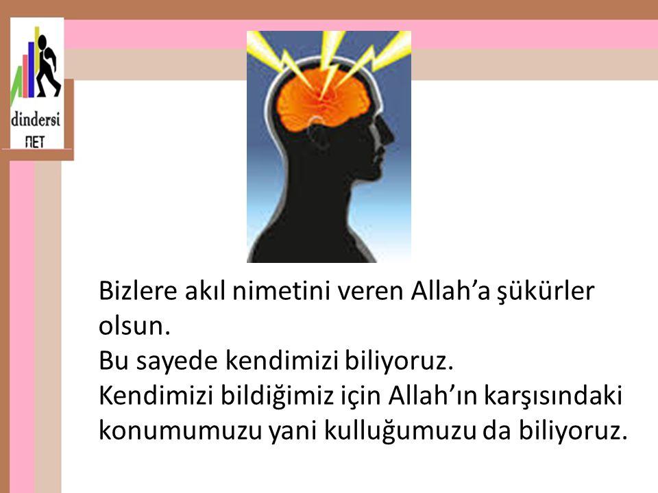 Bizlere akıl nimetini veren Allah'a şükürler olsun