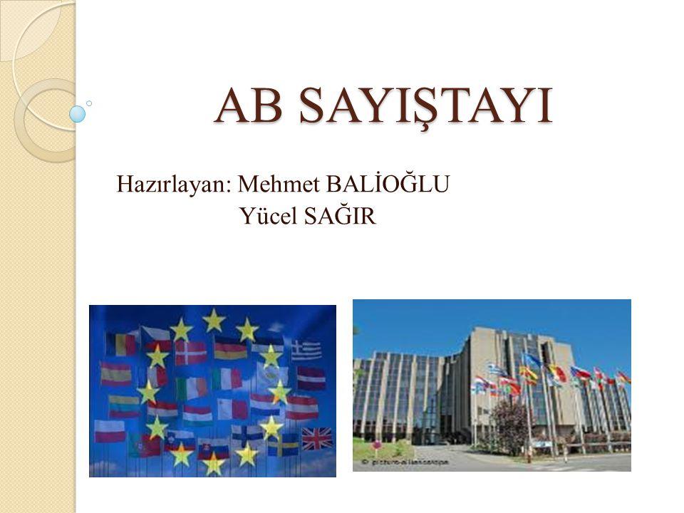 Hazırlayan: Mehmet BALİOĞLU Yücel SAĞIR