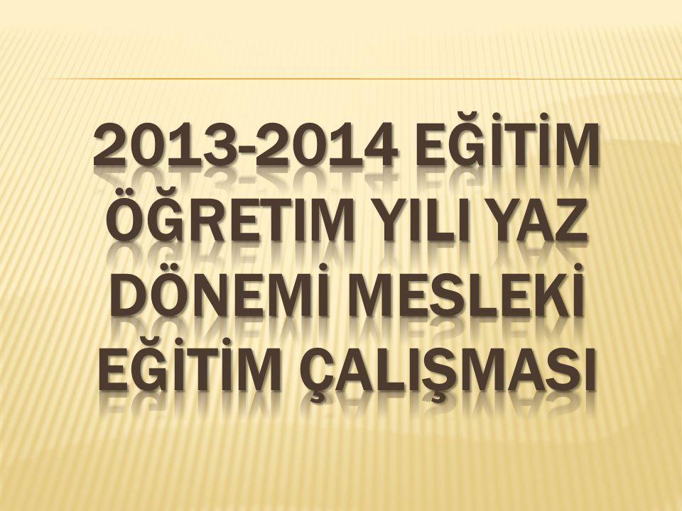 2013-2014 eğİtİm öğretim yIlI yaz dönemİ meslekİ eğİtİm çalIşmasI