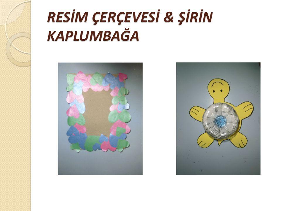 RESİM ÇERÇEVESİ & ŞİRİN KAPLUMBAĞA