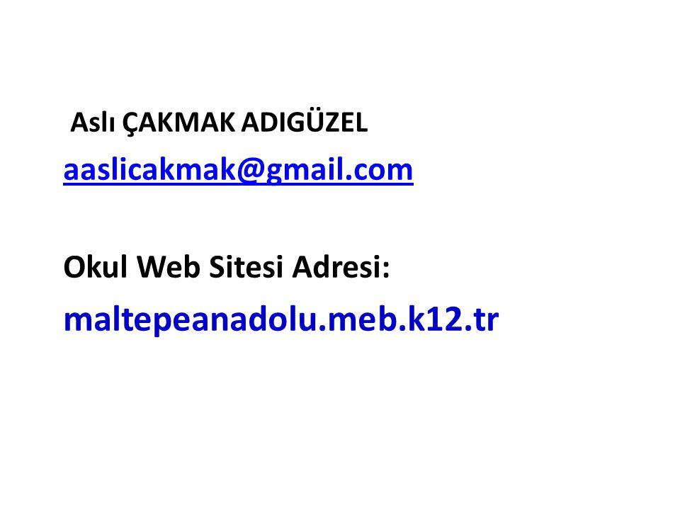 maltepeanadolu.meb.k12.tr aaslicakmak@gmail.com