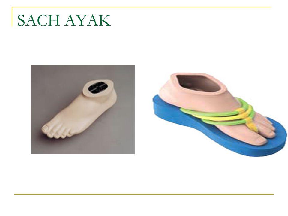 SACH AYAK