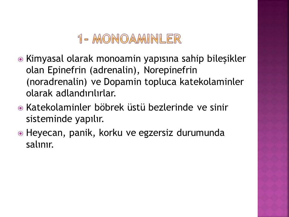 1- Monoaminler