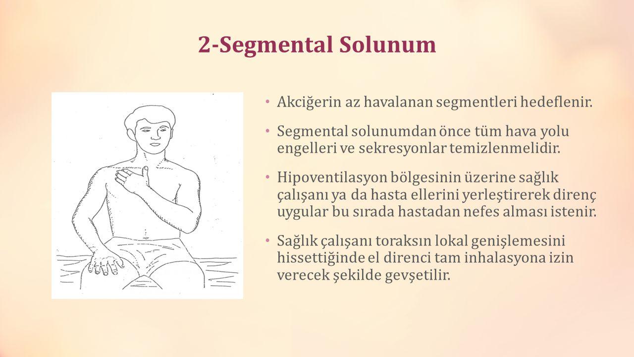 2-Segmental Solunum Akciğerin az havalanan segmentleri hedeflenir.