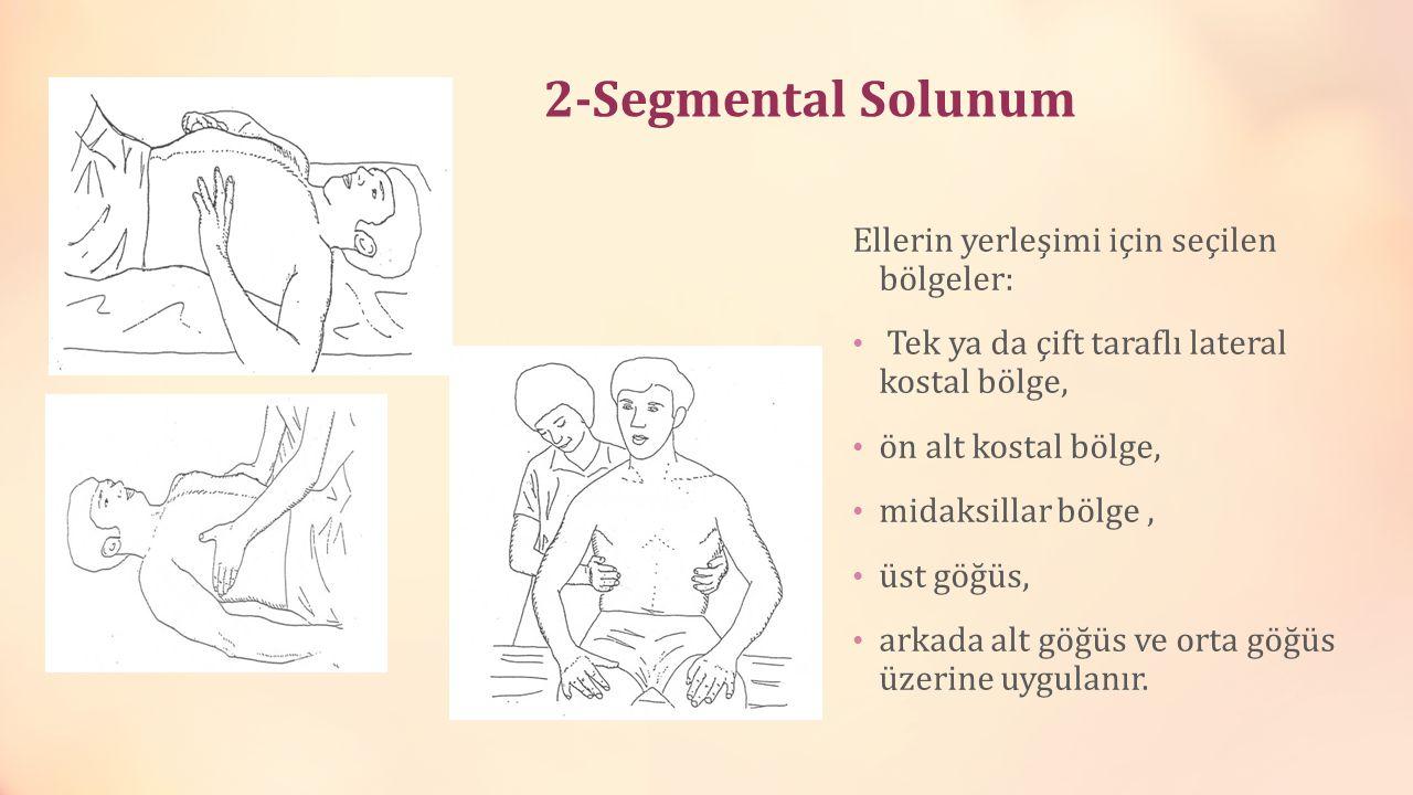 2-Segmental Solunum Ellerin yerleşimi için seçilen bölgeler: