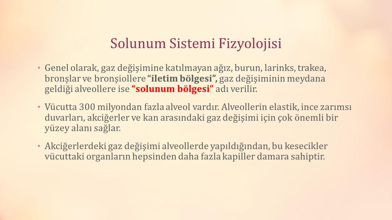 Solunum Sistemi Fizyolojisi