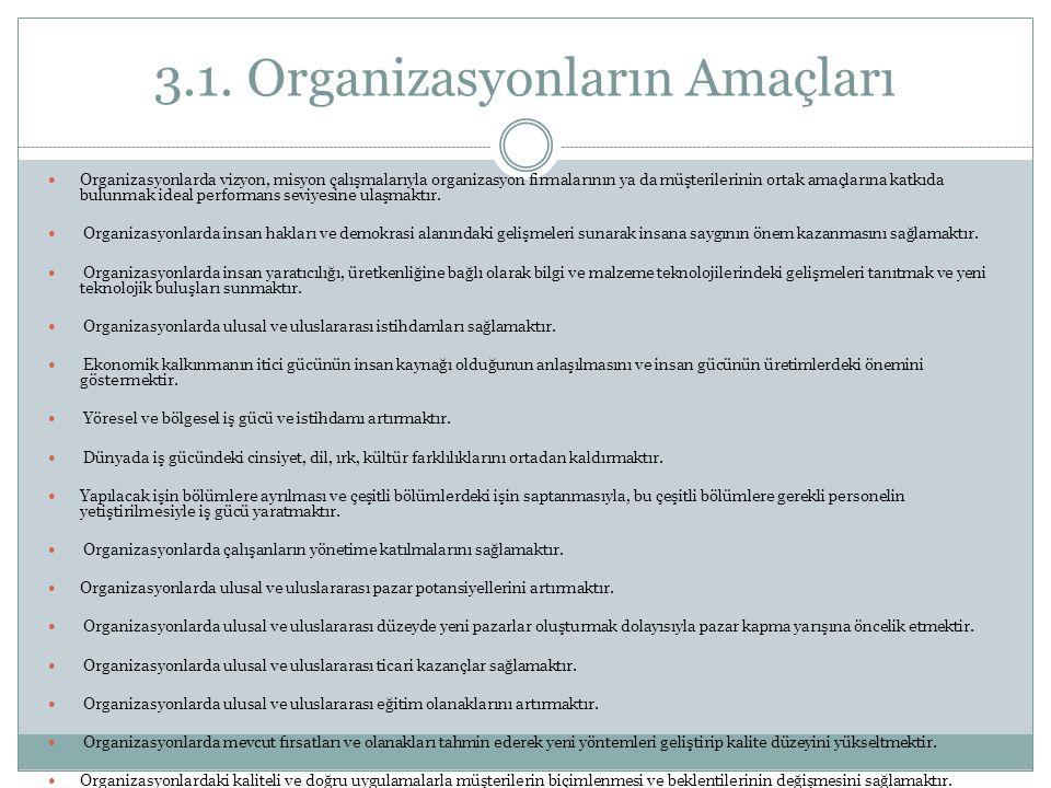 3.1. Organizasyonların Amaçları