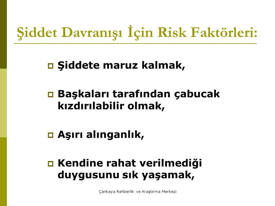 Şiddet Davranışı İçin Risk Faktörleri: