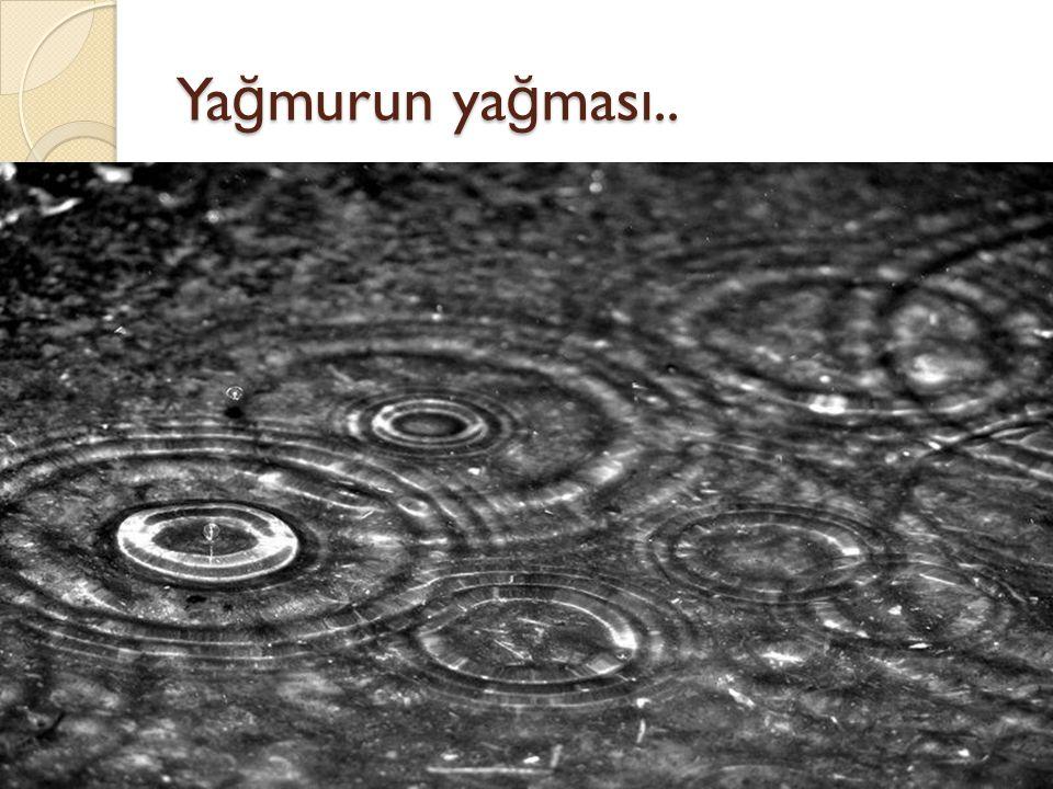 Yağmurun yağması..